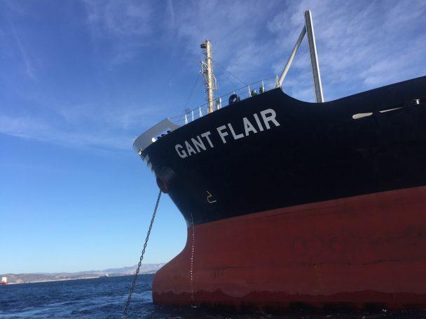 GANT FLAIR 1